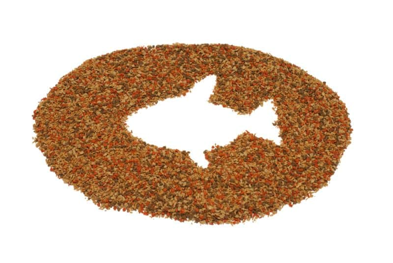 A pile of pet fish food on a white background with the shape of a fish in the center.